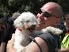 Cane anziano adottato