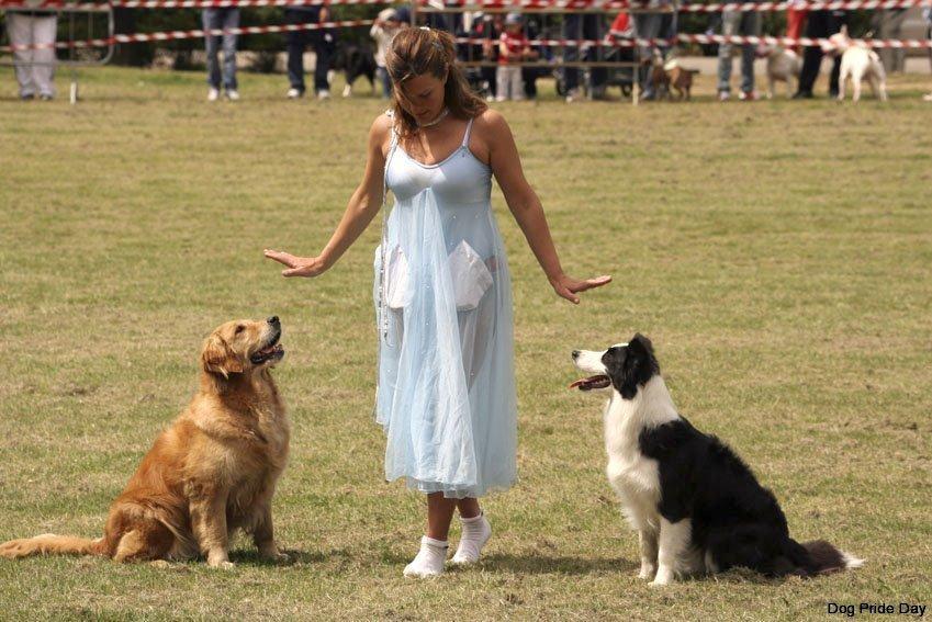 dog-dance-3