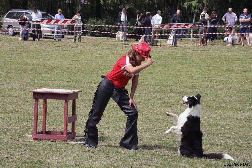 dog-dance1