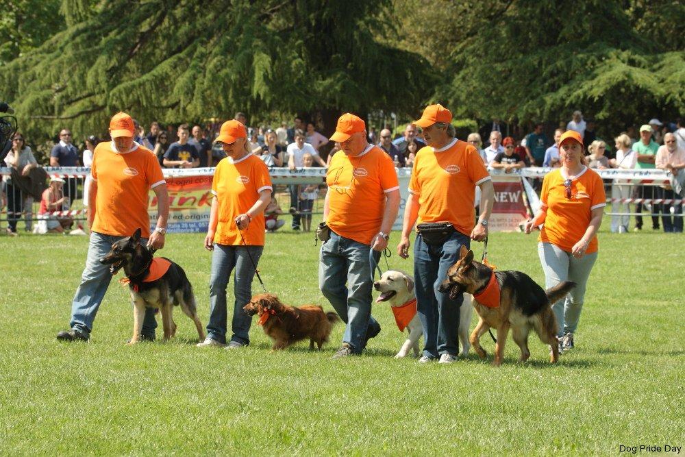 G.S. Addestramento Cani Valdinievole