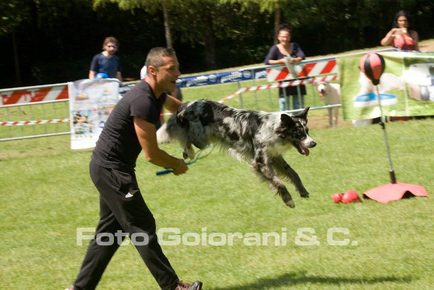 Dog Dance con Gianni Orlandi