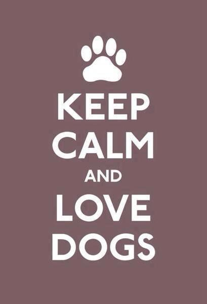 Aforismi sui cani, ovviamente…