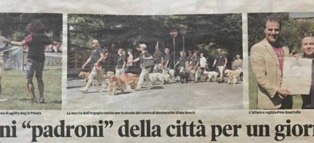 Il DPD su Il Tirreno del 29/05/17