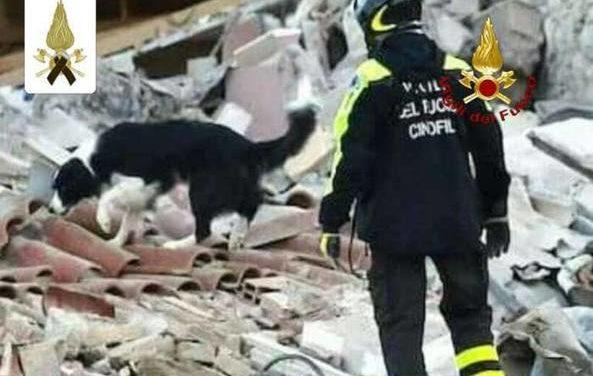 Amatrice ricorda Camilla, cane eroe