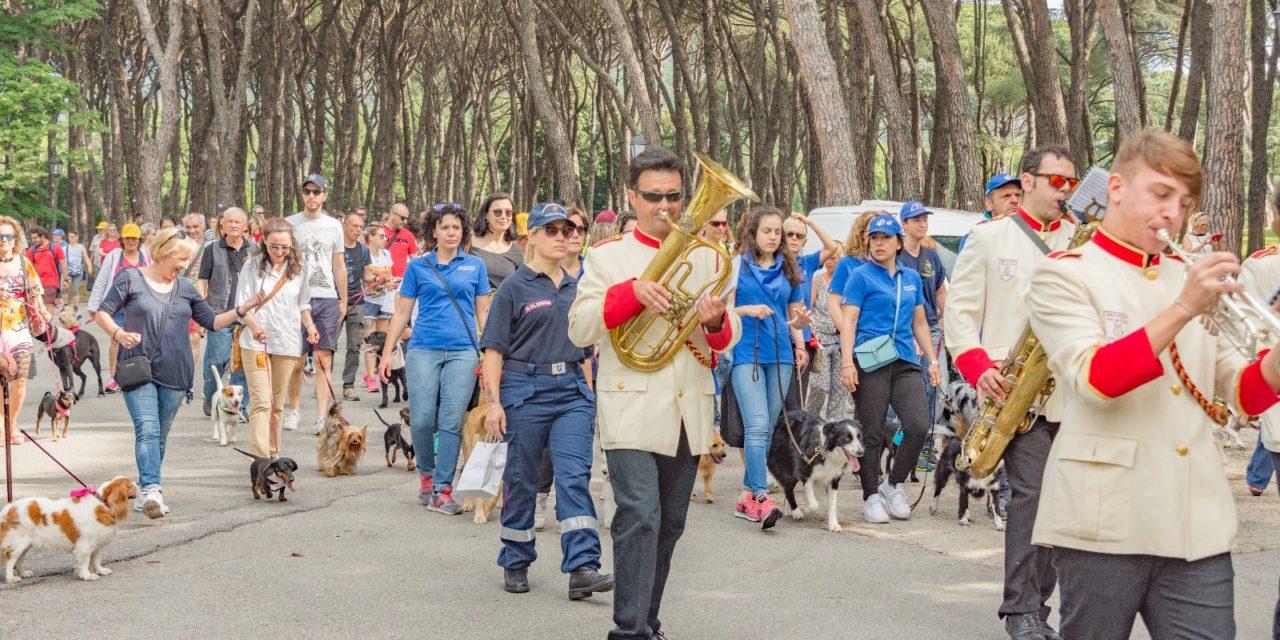 Dog Pride Day 2018: il video con le più belle immagini