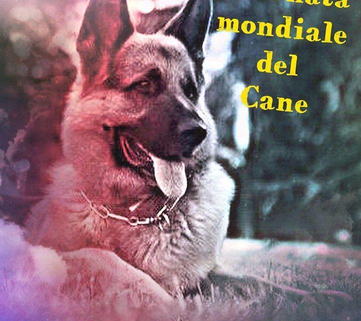 World Dog Day 2019