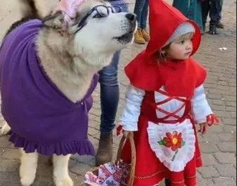 La piccola Agata e il suo cane Yanuk: le più belle maschere di Carnevale!