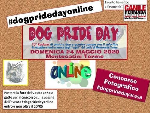 #dogpridedayonline – The Winner is…