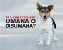 NO all'abbandono!!!!