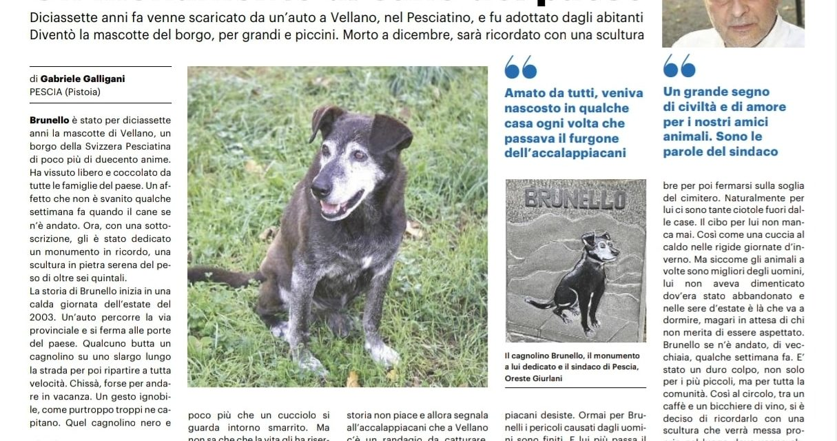 """Vellano (Pistoia) inaugura il monumento a Brunello, """"il cane di tutto il paese"""""""