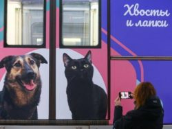 Succede a Mosca…