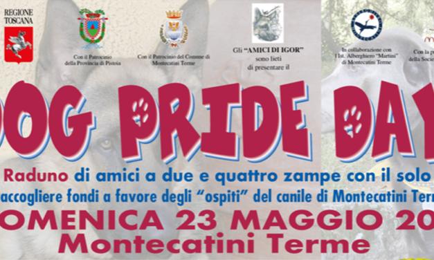 Dog Pride Day 2021…