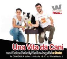 Dog Pride Day 2021 Virtual Walk & Una vita da cani
